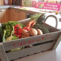 Légumes projet dans le finistère en Bretagne